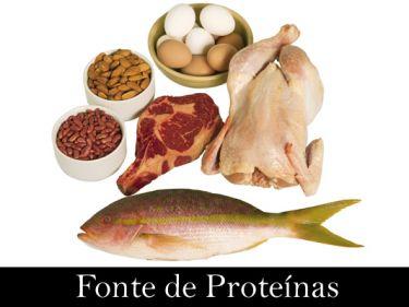 As proteínas estão presentes em diversos alimentos